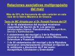 relaciones asociativas multiprop sito del ma z