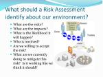 what should a risk assessment identify about our environment