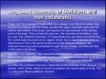 jing luo channels or meridians and their collaterals