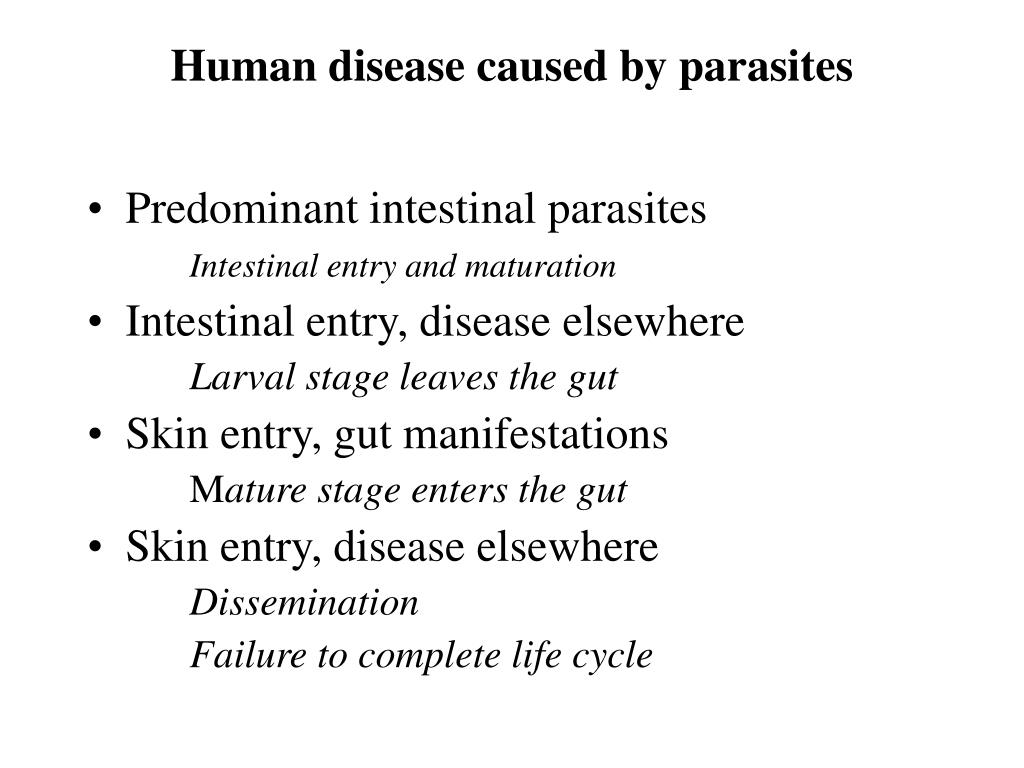human disease caused by parasites l.