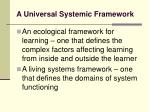 a universal systemic framework