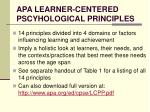 apa learner centered pscyhological principles