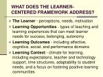 what does the learner centered framework address
