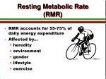 resting metabolic rate rmr