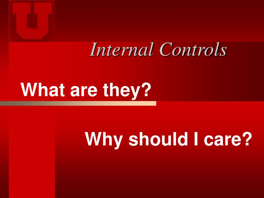 internal controls l.