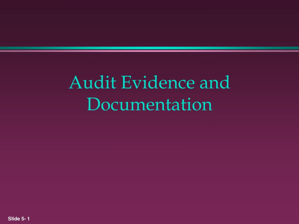 audit evidence and documentation l.