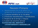 revisi n primaria29