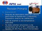 revisi n primaria36