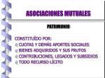 asociaciones mutuales15
