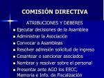 comisi n directiva