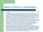 marco jur dico y organismos