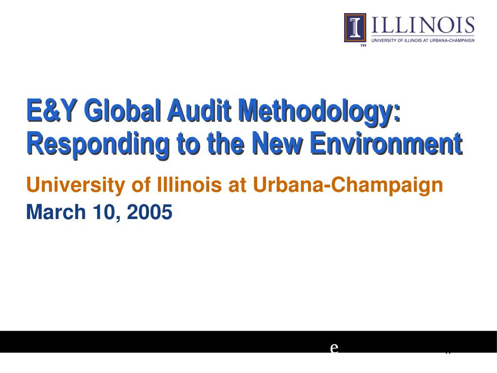 e y global audit methodology responding to the new environment l.
