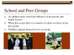 school and peer groups