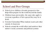 school and peer groups27