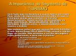 a import ncia do segmento do turismo7