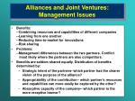 alliances and joint ventures management issues17
