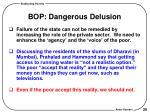 bop dangerous delusion