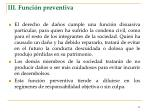 iii funci n preventiva