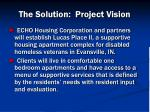 the solution project vision