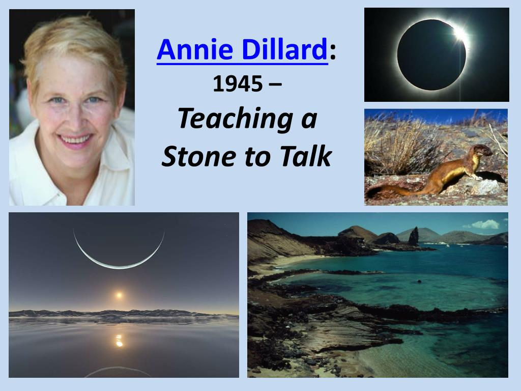 essay teaching a stone to talk Teaching a stone to talk by annie dillard, 9781782118855, available at book depository with free delivery worldwide.