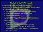 indices corporales