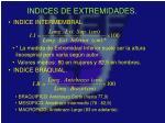 indices de extremidades9