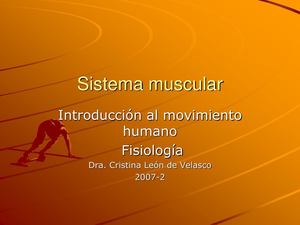 sistema muscular l.