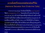 hormone secretion from endocrine cells40