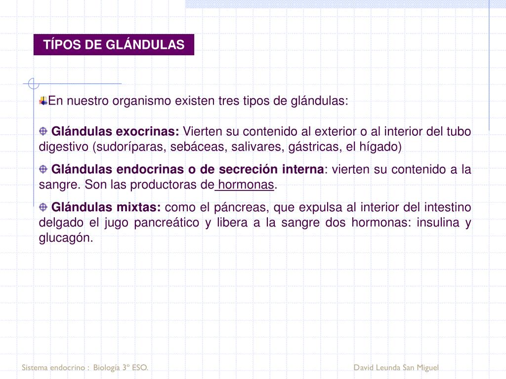 TÍPOS DE GLÁNDULAS