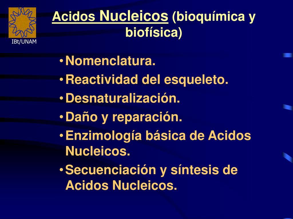 acidos nucleicos bioqu mica y biof sica l.