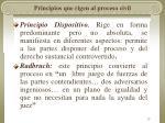 principios que rigen al proceso civil
