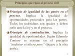 principios que rigen al proceso civil35