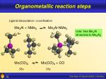 organometallic reaction steps