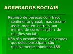 agregados sociais