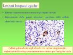 lesioni istopatologiche