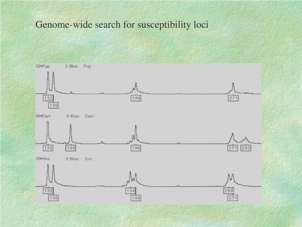 Genome-wide search for susceptibility loci