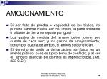 amojonamiento24