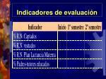 indicadores de evaluaci n