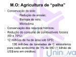m o agricultura de palha