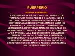 puerp rio21