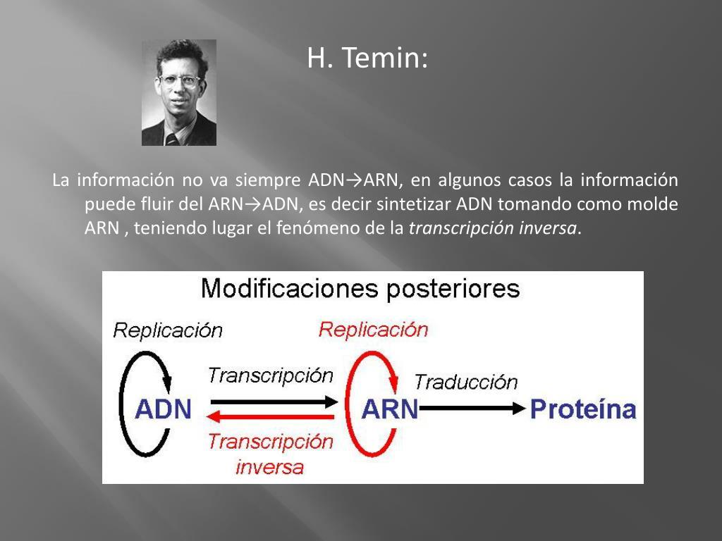 H. Temin: