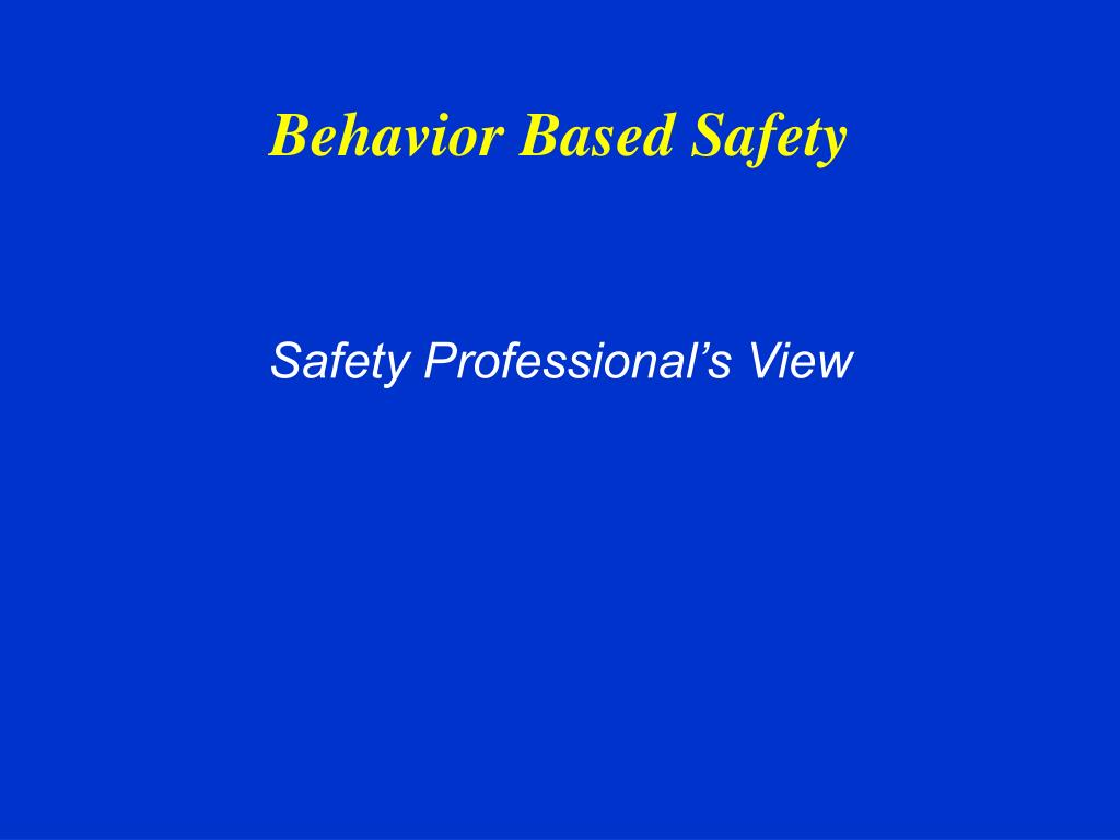 safety professional s view l.