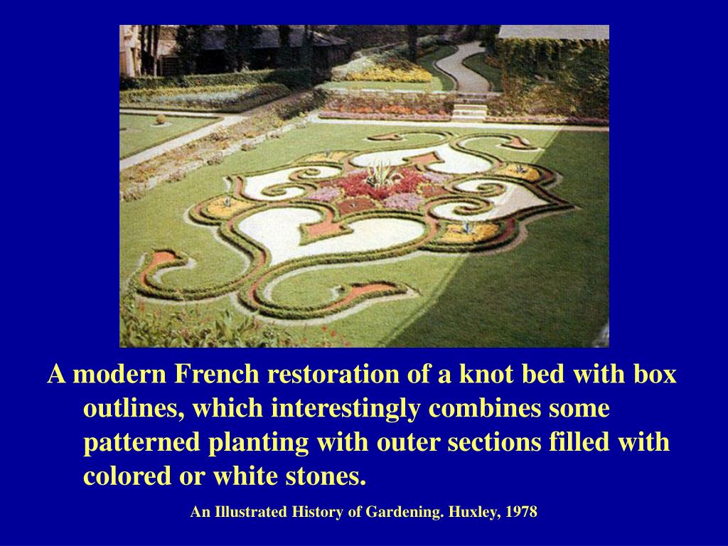 A modern French restoration of a knot bed with box 	outlines, which interestingly combines some 	patterned planting with outer sections filled with 	colored or white stones.