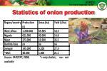 statistics of onion production