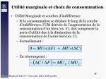 utilit marginale et choix de consommation45