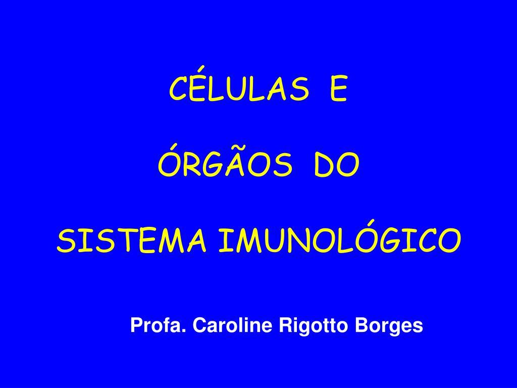 c lulas e rg os do sistema imunol gico l.