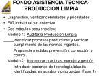 fondo asistencia tecnica produccion limpia