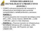 fondo desarrollo tecnol gico y productivo fontec