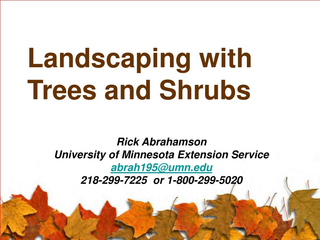 landscaping with trees and shrubs l.