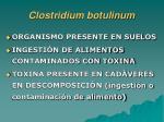 clostridium botulinum17